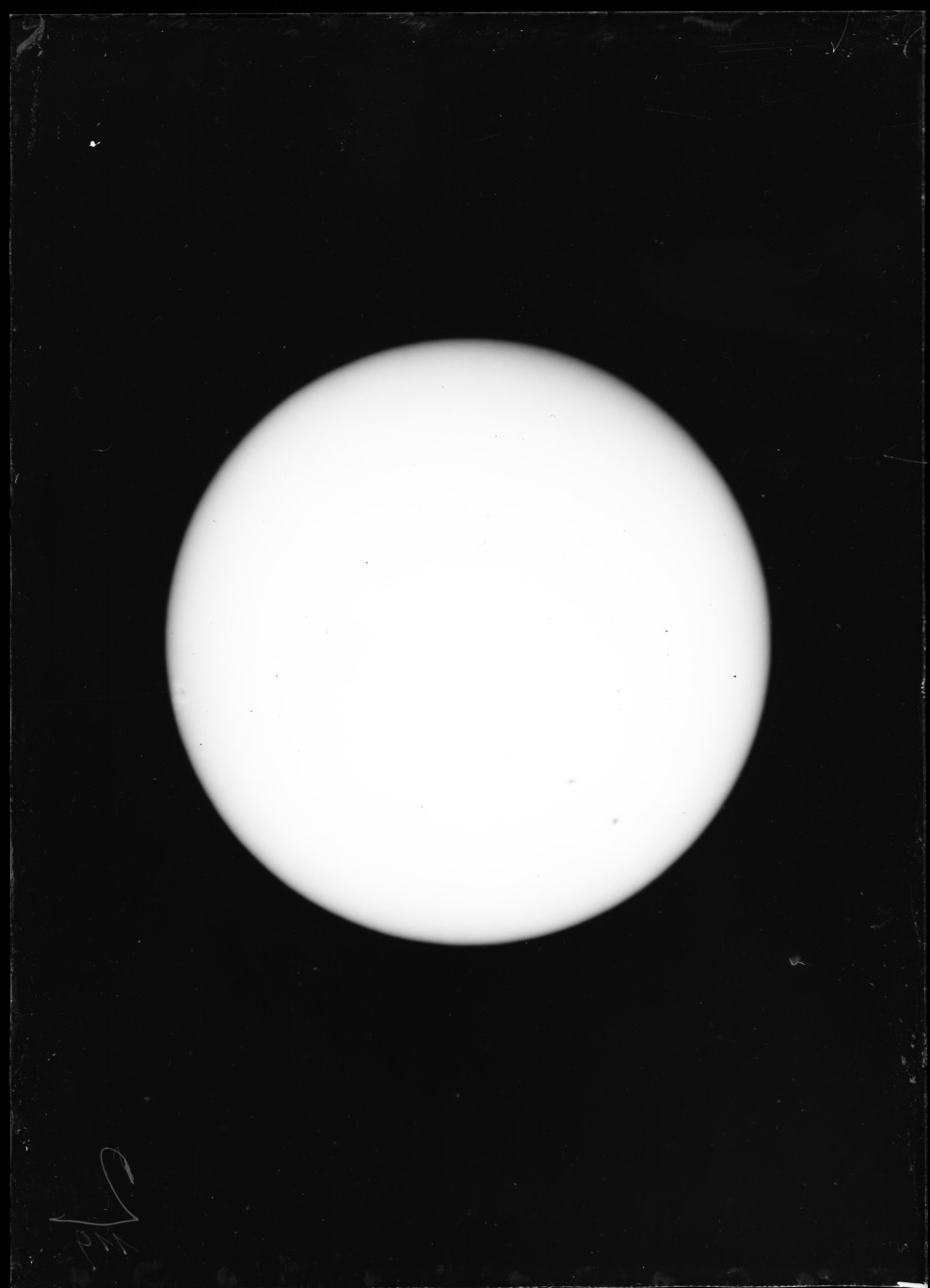 AGlV119